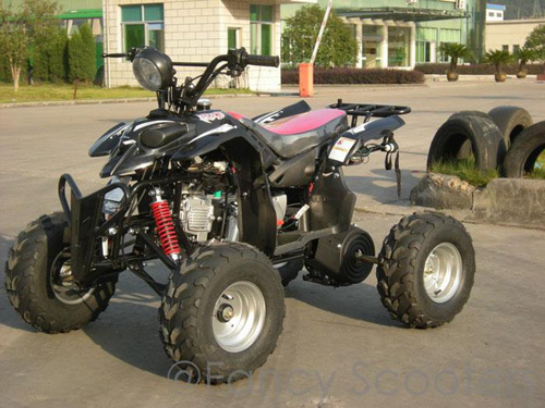 Peace Mini Sporty ATV (110cc Wider and Taller than ATV507) with Front Hand/Rear Foot Brake